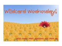 Wildcardwed