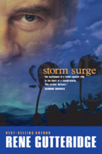 Stormsurge